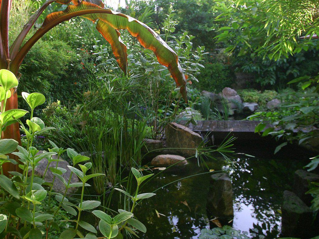 pgh_gallery_pond
