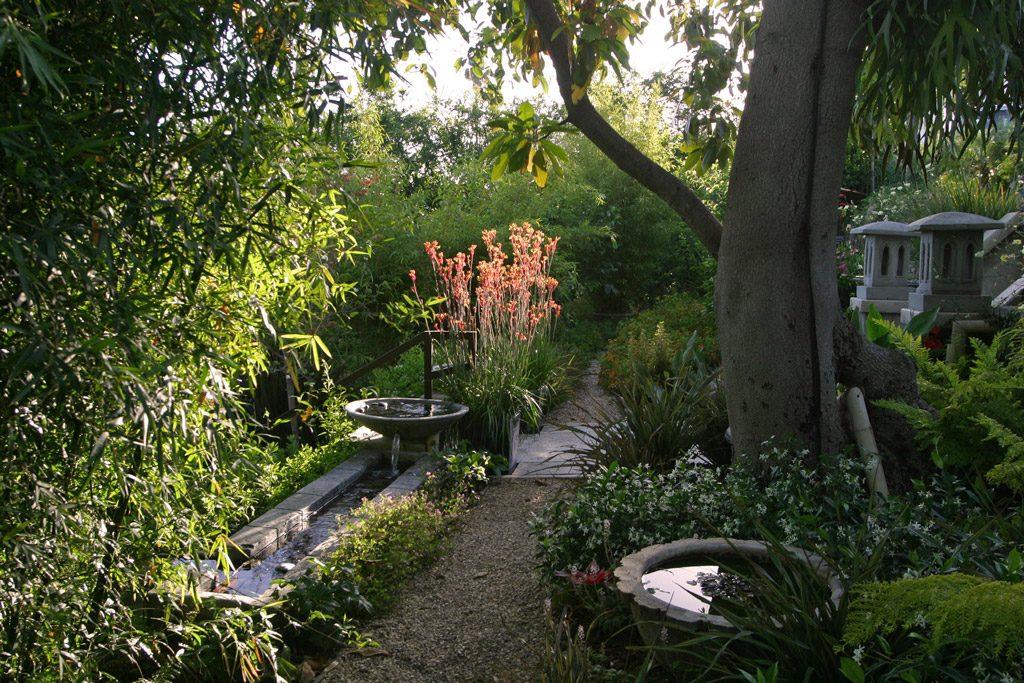 pgh_gardens_kangaroopaw