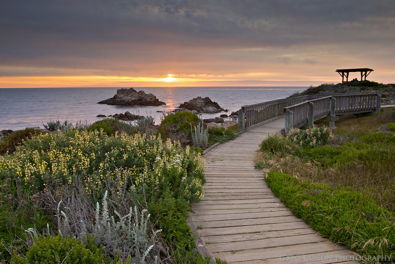 Asilomar Conference Grounds - Living In Grace